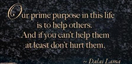 our-prime-purpose-in-this-life-is-to-help-others-and-if-you-cant-help-them-at-least-dont-hurt-them-quote-1 (447x217)
