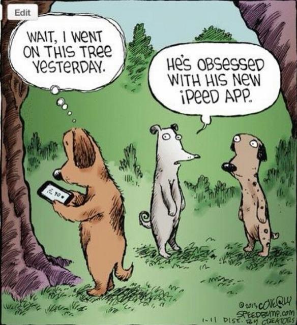 69c92d1fad9003d01122d5f09155190b--dog-humor-dog-funnies (584x640)
