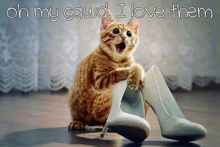 kittylovesshoes (432x288)