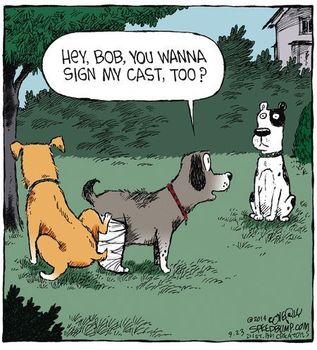 25-you-wanna-sign-my-cast-funny-dog-cartoon (450x497)